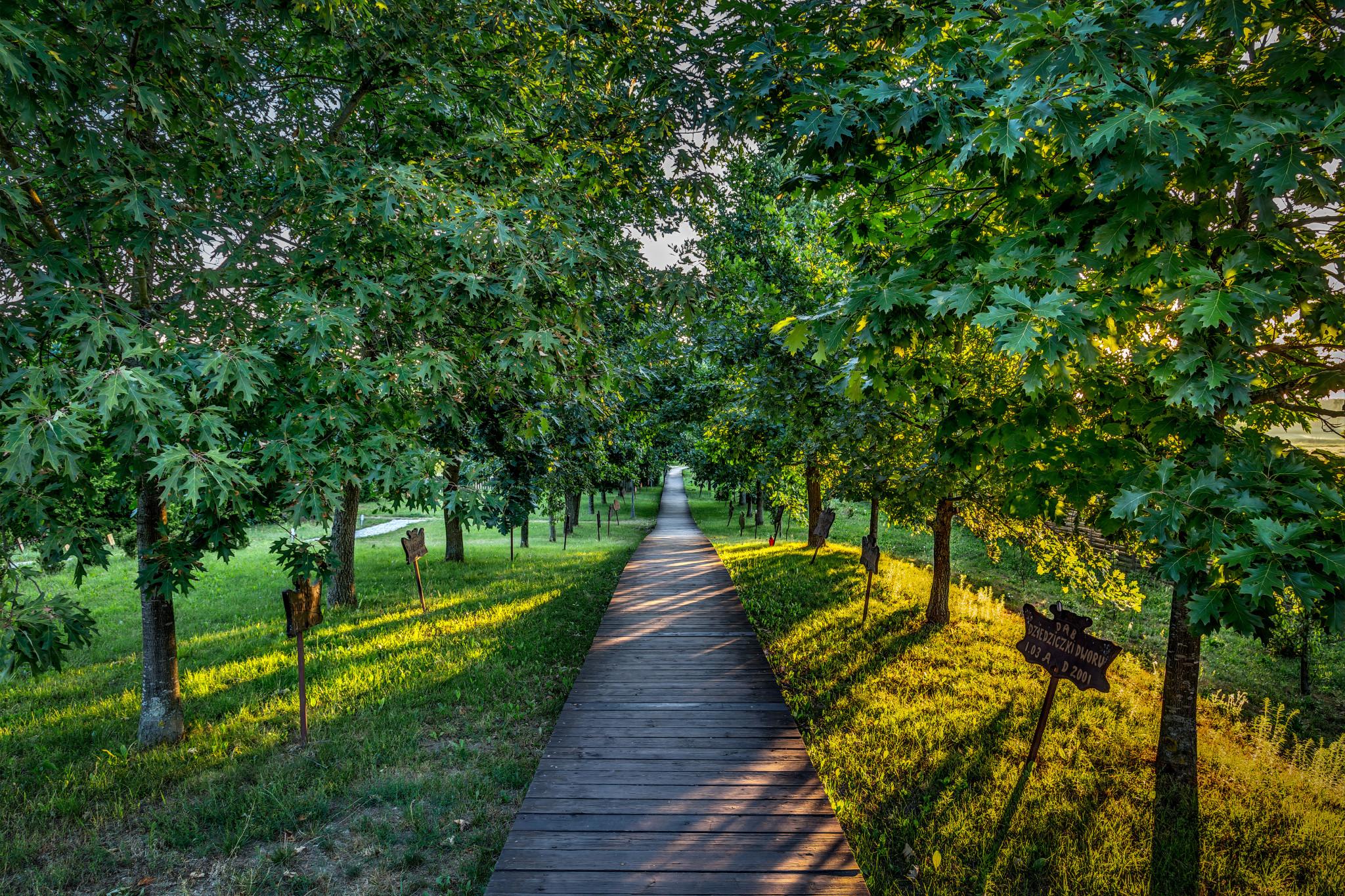 Kiermusy_Dworek_0004 Panorama